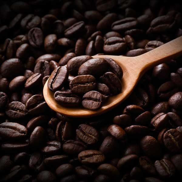 TORQPressCoffee-peru-beans